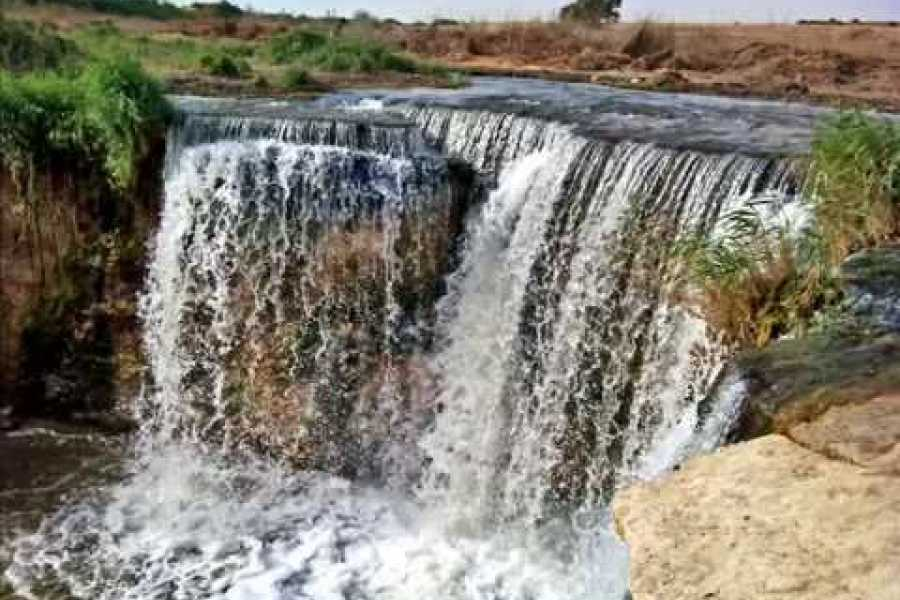 Excursies Egypte Fayoum Oasis & Wadi Al Rian Day Tour from Cairo