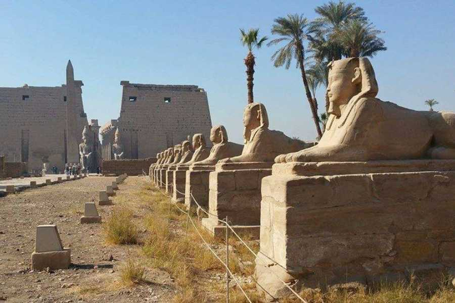 Excursies Egypte LUXOR,HAMATA AND ABU SIMBEL 2 DAYS TOUR