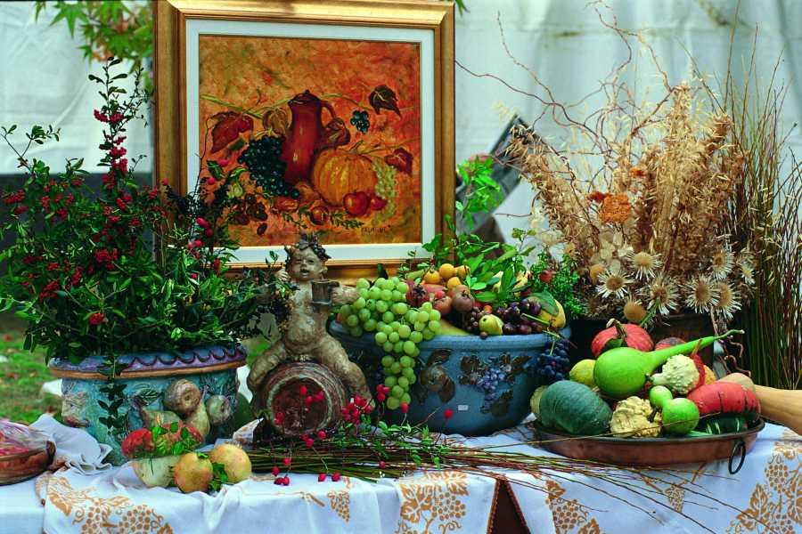 IF Imola Faenza Camminar per Sagre – Festa dei Frutti Dimenticati