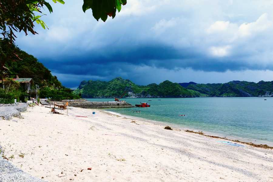 OCEAN TOURS COMBO HANOI - CAT ONG ISLAND (CAT BA)