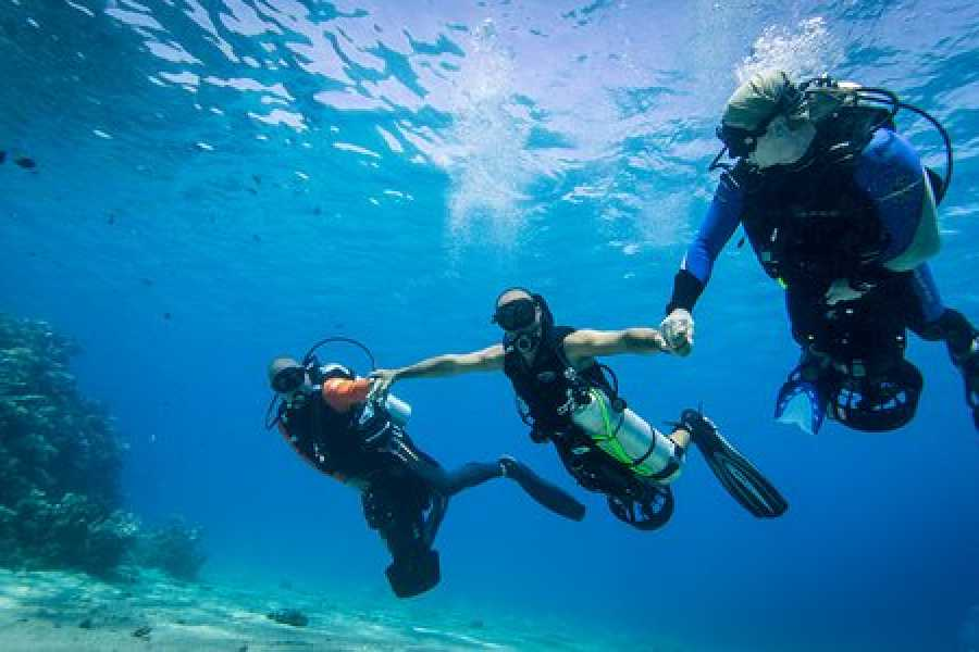 Marsa alam tours Diving intro trip from Makadi