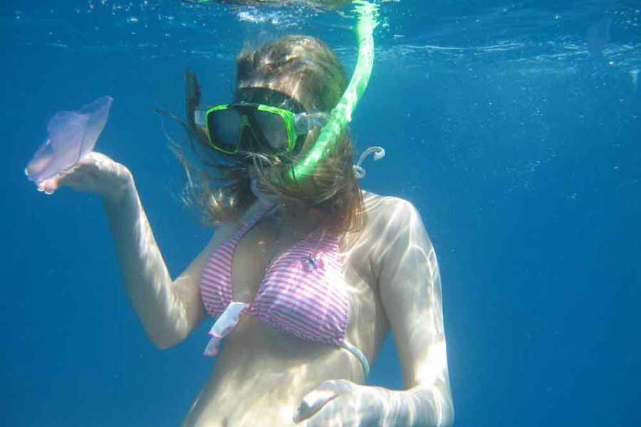 Marsa alam tours Tiran island snorkeling trip from Sharm el sheikh