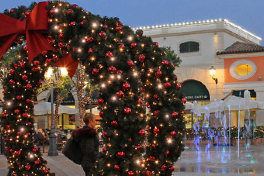 Di Nocera Service Christmas Shopping Tour