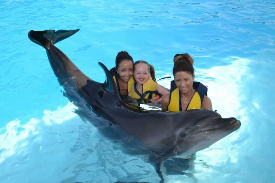 Marsa alam tours Dolphin house Tour From Sharm  El Shiekh