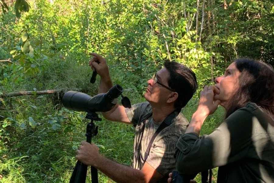 Uvita Information Center Bird Watching Oro Verde