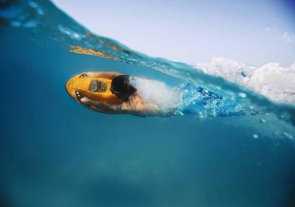 Seabob Experience in Mauritius
