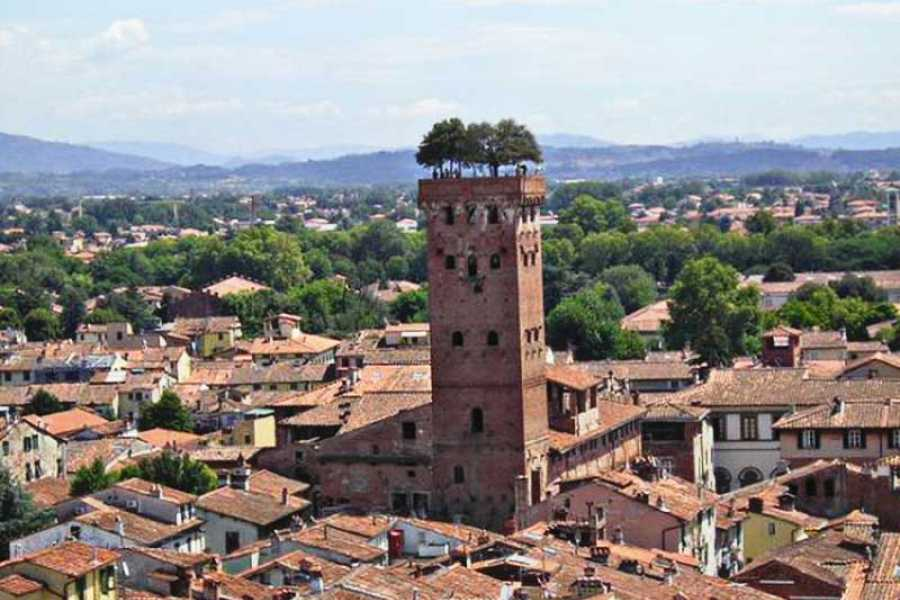 ACCORD Italy Smart Tours & Experiences PISA & LUCCA  BY MINIVAN - SMALL GROUP