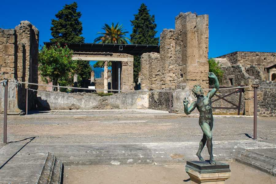 Travel etc Pompeii Half Day from Naples