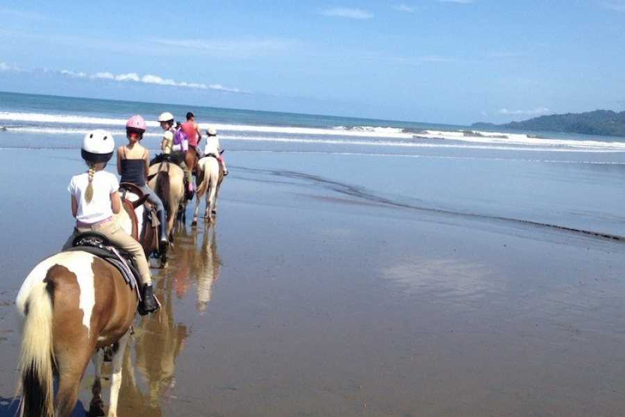 Uvita Information Center Beach Horseback Riding at La Merced Wildlife Refuge