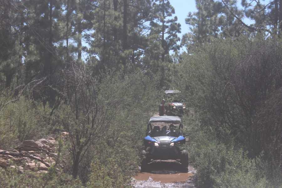 Buggy Safari Tenerife Buggy Safari 2018