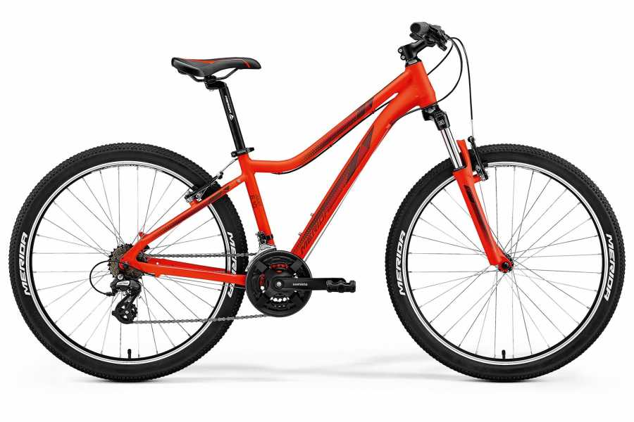 Viking Biking Bike Rental: Mountain Bikes