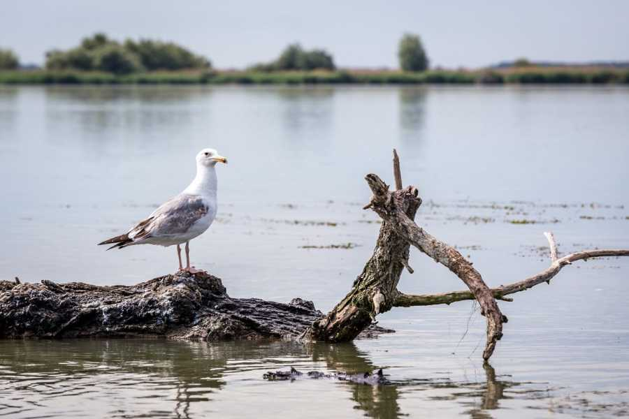 TravelMaker Danube Delta Tour - shared - 2 days