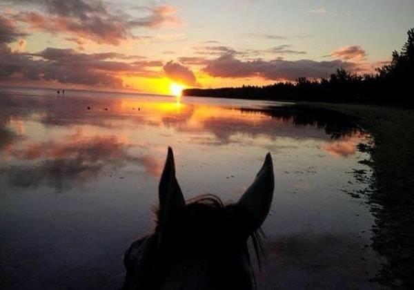 Romantic Sunset Horseback Ride