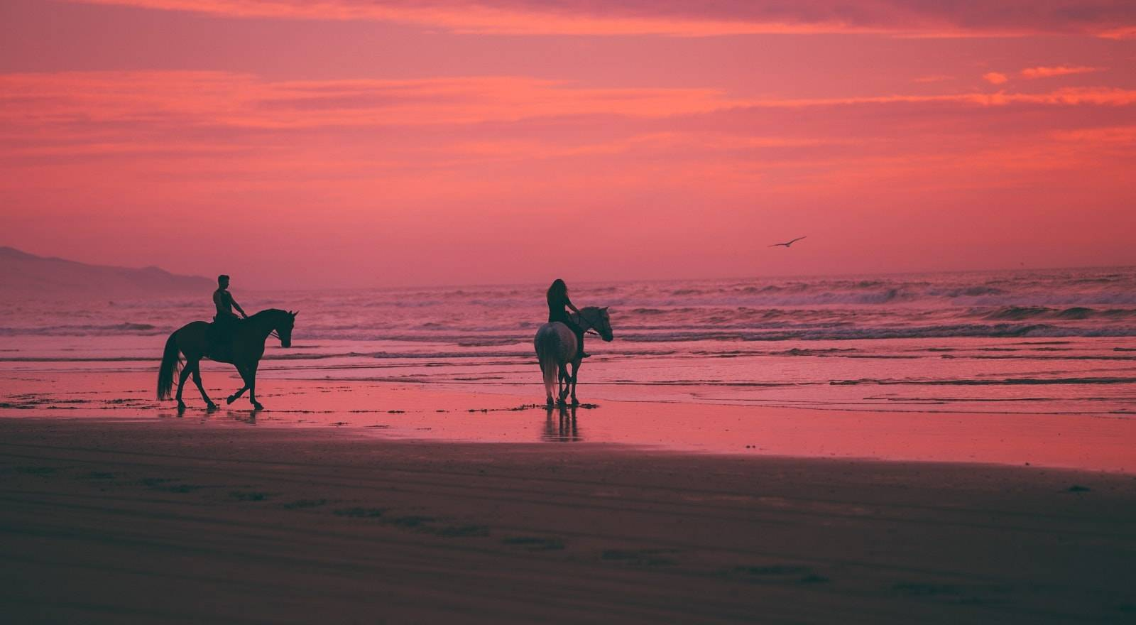 Romantic Sunset Horseback Ride
