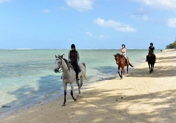 Horseback Ride along the beautiful beach of Mauritius, Pomponnette + BBQ Lunch