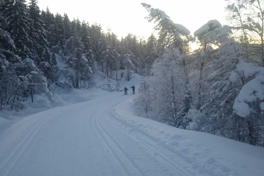 Juklafjord -Jondal Tourist Information Cross Country Ski Trail, Vassenden-Fodnastøl