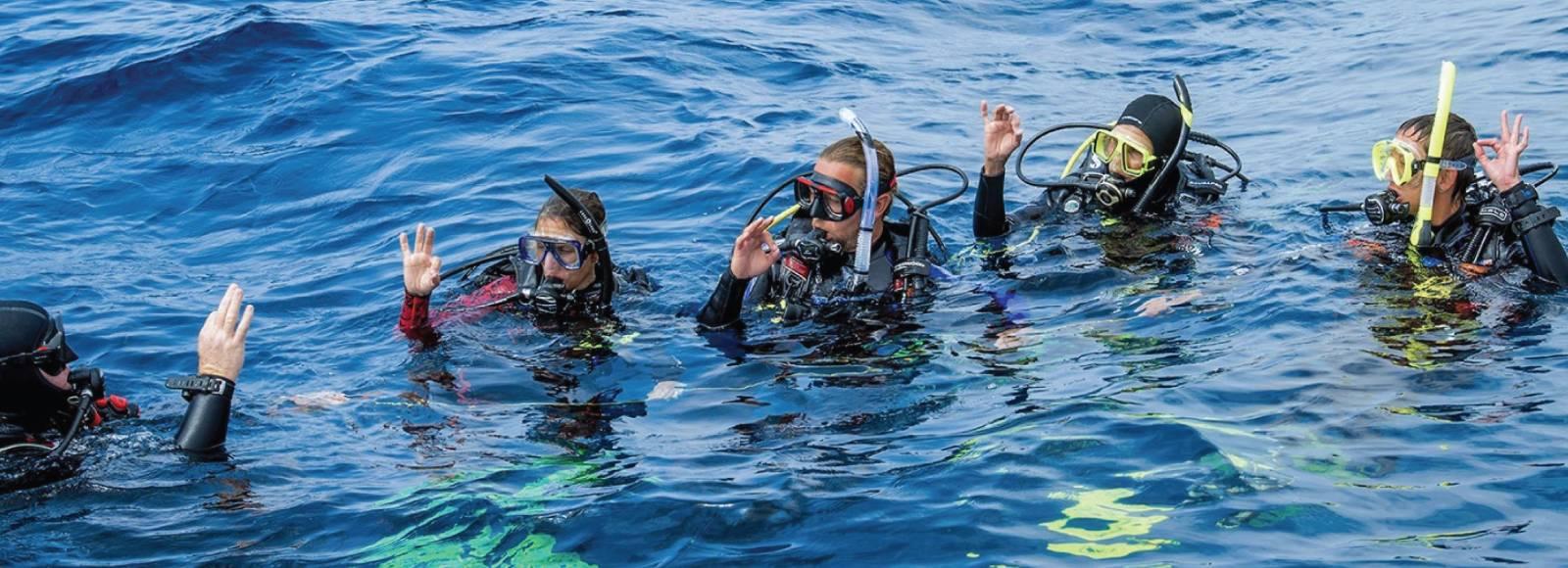 Discover Scuba Diving, Discover Scuba Diving, Discover Scuba Diving