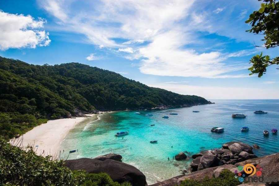 AMICI MIEI PHUKET TRAVEL AGENCY SIMILAN ISLAND ONE DAY TRIP FROM KHAO LAK - AM003