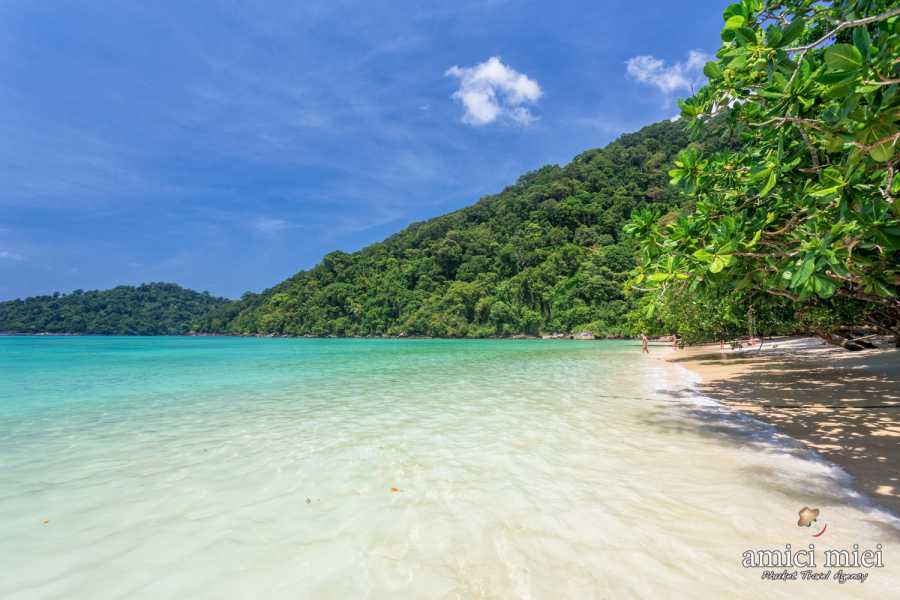 AMICI MIEI PHUKET TRAVEL AGENCY Surin Island National Park full day Trip from Khao Lak  - AM007