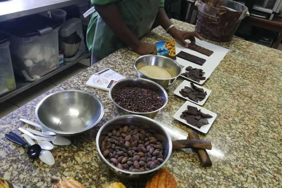 Eco Adventures Saint Lucia Tours Gourmet Chocolate Making class