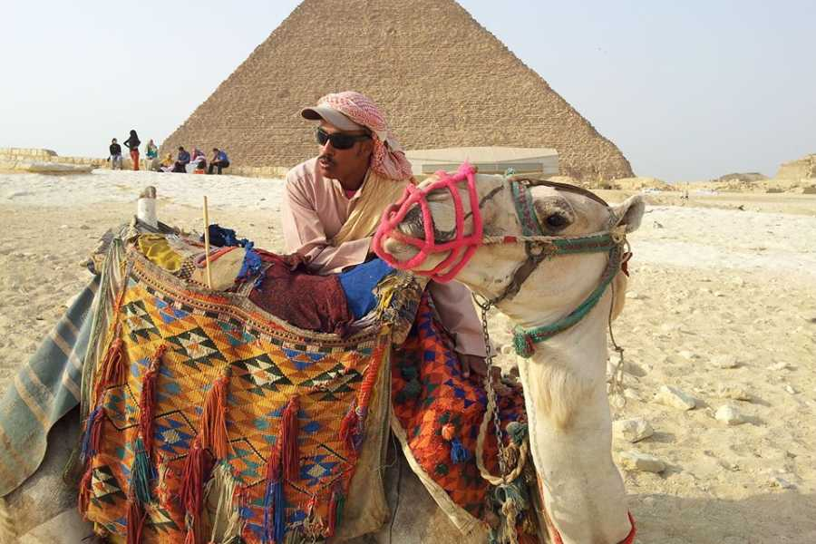 Marsa alam tours Cairo Private day tour from Hurghada by private Car