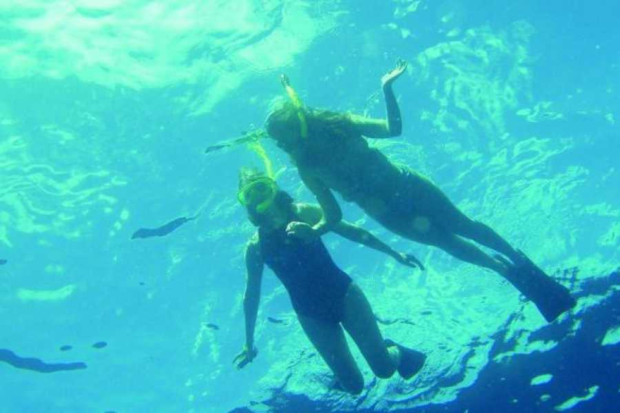 Marsa alam tours Abu Dabbab Dugong Snorkelling Trip from Makadi bay