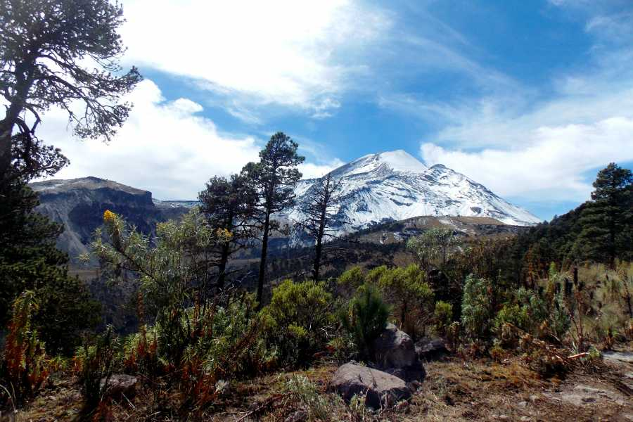Tours y Tickets Operador Turístico Visita al Pico de Orizaba saliendo desde Veracruz o Boca del Rio