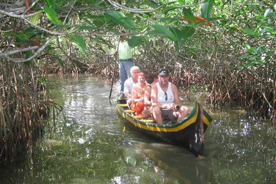 Medellin City Tours CARTAGENA CANOE MANGROVES