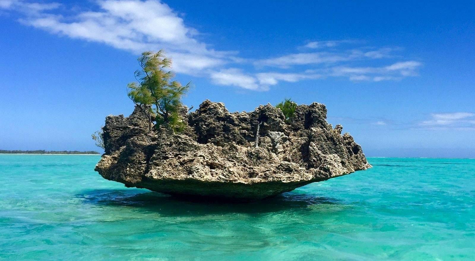 Croisière privée d'une demi-journée en catamaran