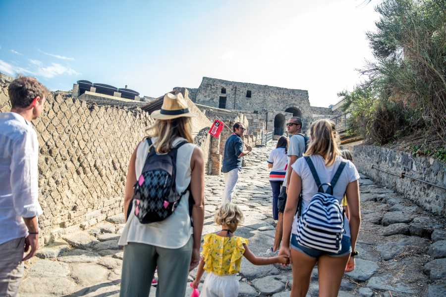Travel etc Skip the Line Pompeii Guided Tour with Official Guide from Sorrento
