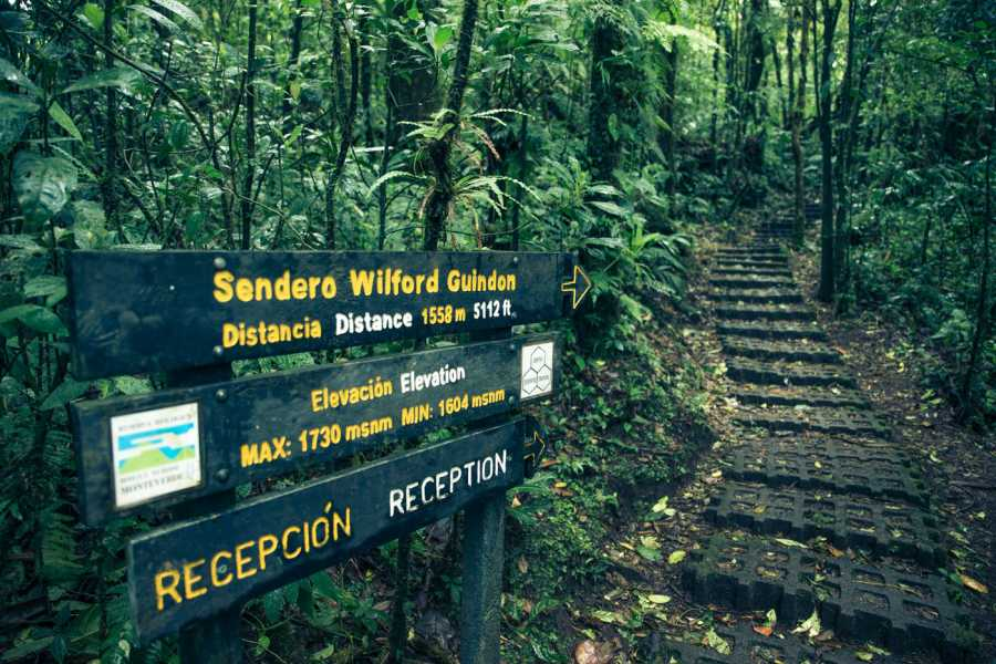 Tour Guanacaste Monteverde Cloud Forest by TAM