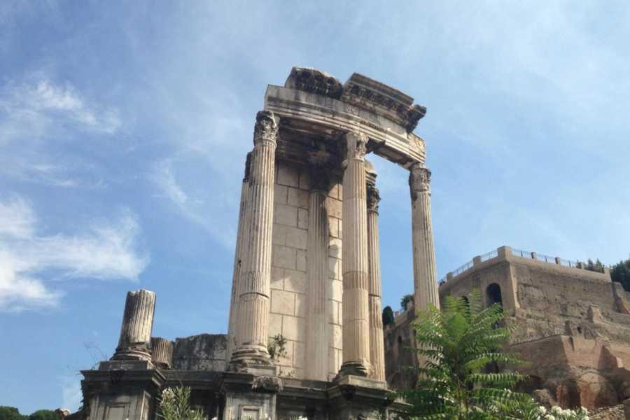 Real Rome Tours Colosseum Gladiator's Gate & Roman Forum Semi-Private Tour