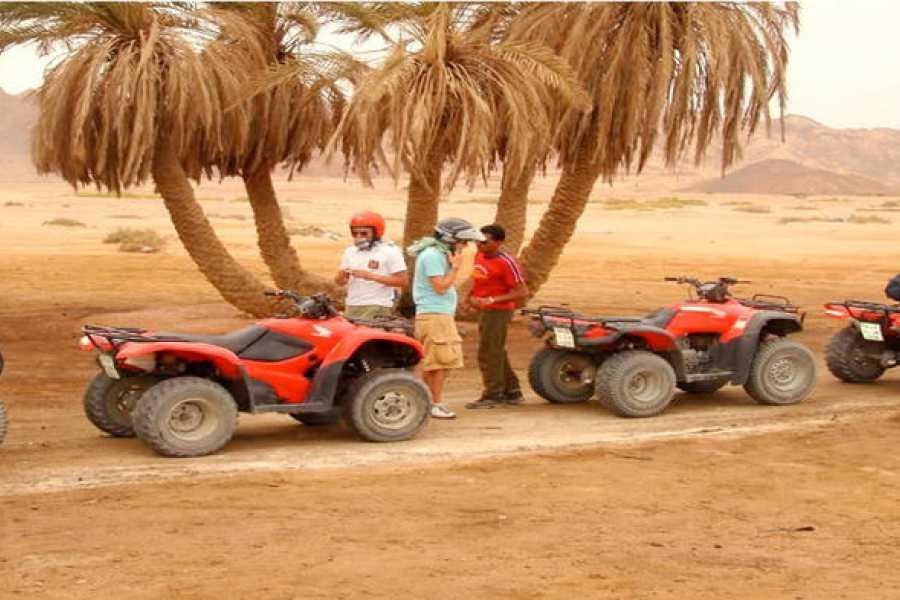Excursies Egypte Après-midi privé de quad à Hurghada