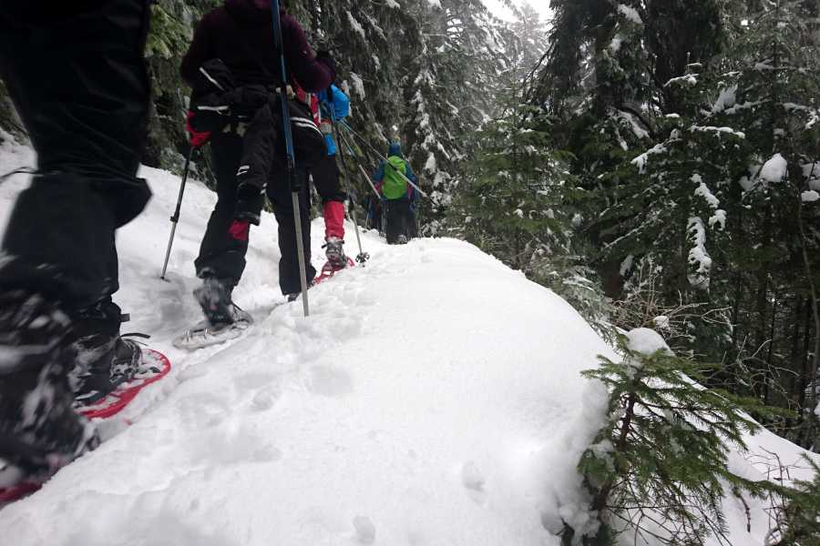 Green Visions Trebevic Snowshoe Hike
