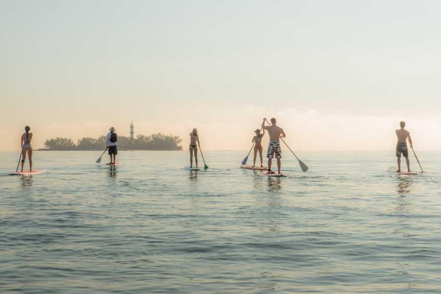 Tours y Tickets Operador Turístico Paddle hacia La Isla de Sacrificios