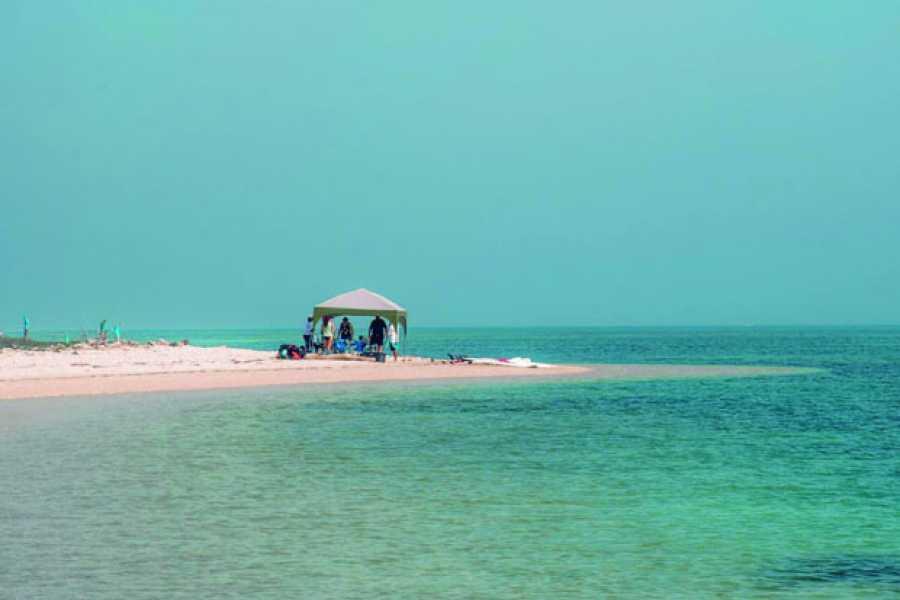 Tours y Tickets Operador Turístico Lancha a la Isla de Enmedio