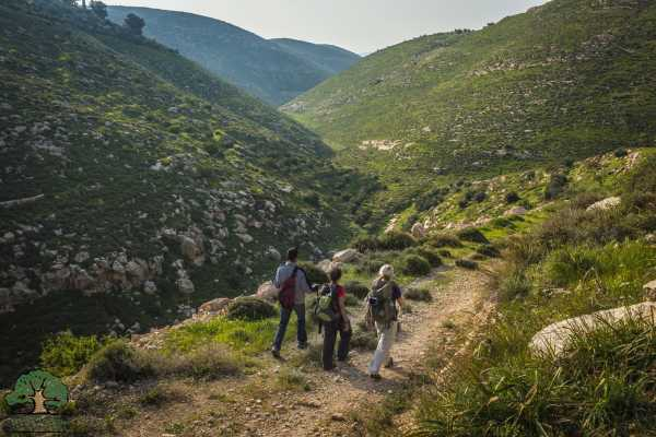 19 - 25 November 2020, Tuqua to Beit Mirsim, Autumn Thru-Hike 2020