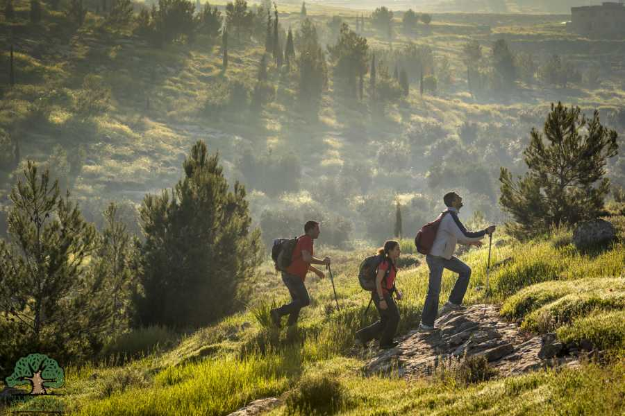 Siraj Center 19 - 25 November 2019, Tuqua to Beit Mirsim, Autumn Thru-Hike 2019