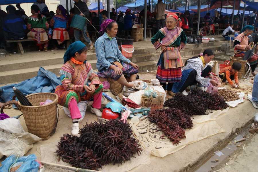 OCEAN TOURS Bac Ha market (Every Sunday)