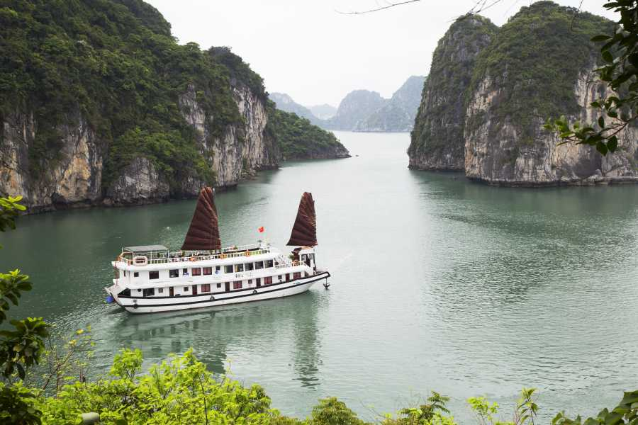 Friends Travel Vietnam Swan Cruise | Bai Tu Long Bay 2D1N