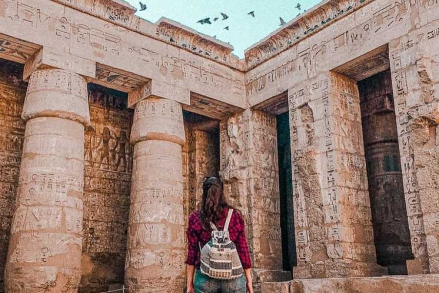 EMO TOURS EGYPT Private Full-Day Tour of Luxor from Marsa Alam with Lunch