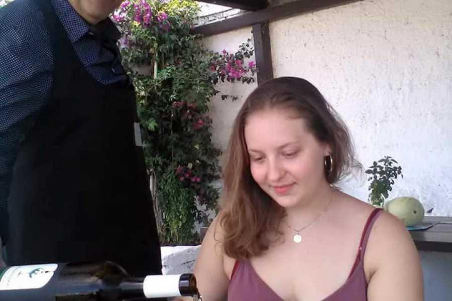 Grekaddict Wine Tasting Experience at Mykonos