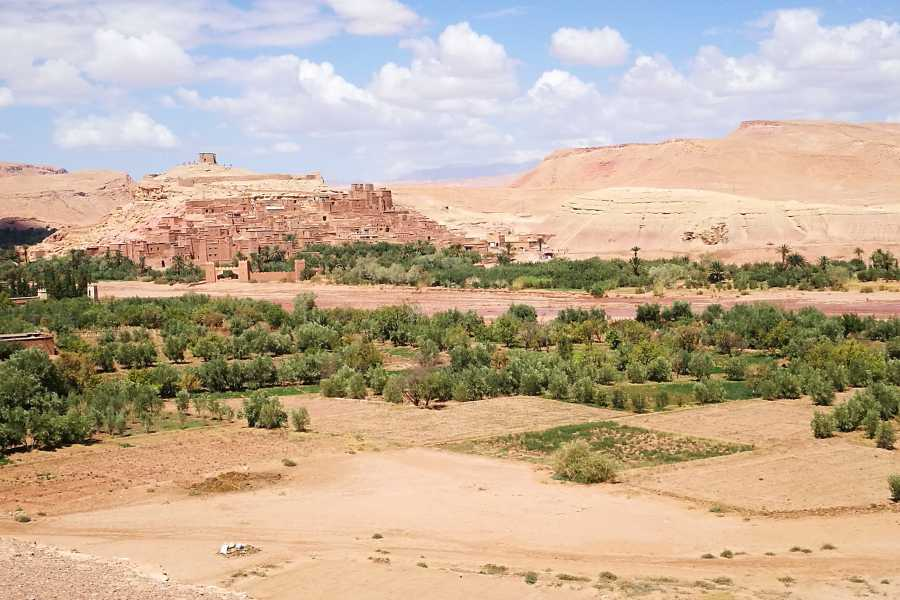 Graffiti Sotto la Lente Marocco - Città Imperiali e Deserto