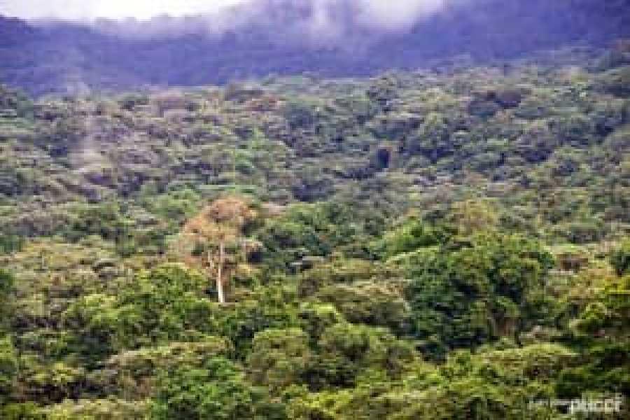 Tour Guanacaste Sensoria Land of Senses Journey
