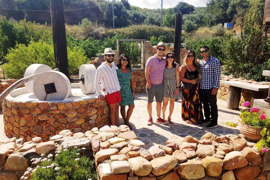 Grekaddict Wine and Olive Oil Tour in Crete