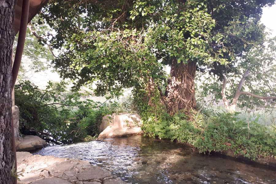 Grekaddict The 7 Villages of Apokoronas Tour from Chania