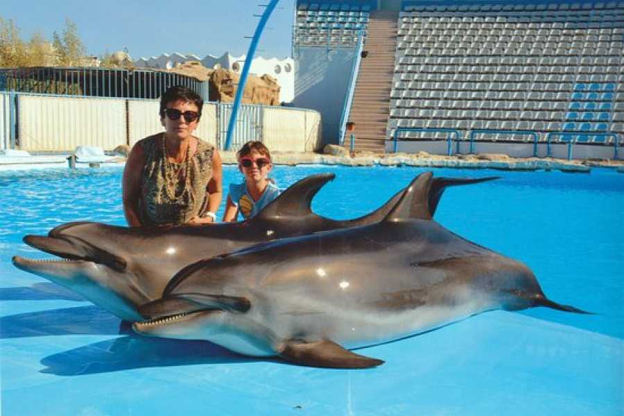 Marsa alam tours Swim with dolphins in Hurghada