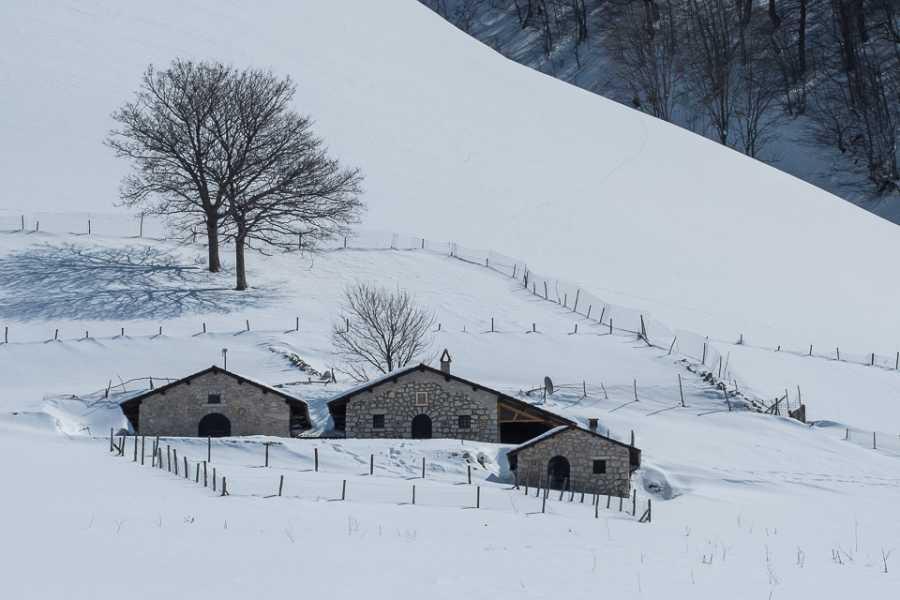 Wildlife Adventures Weekend di sci escursionismo al Parco d'Abruzzo
