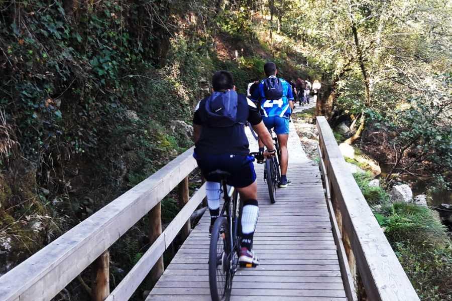 Nature4 Aluguer De Bicicletas