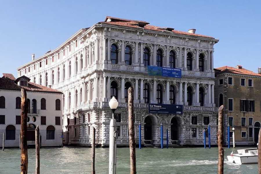 Venice Tours srl Tour privato dei Musei di Ca' Pesaro